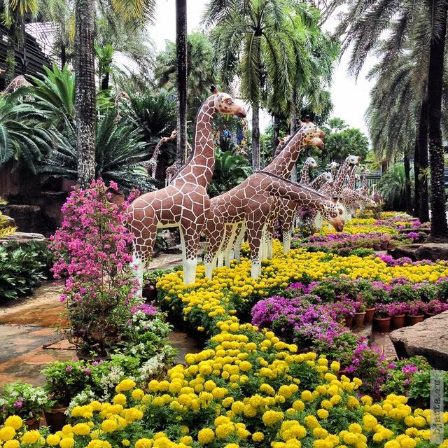 2012. Nong Nooch. Thailand. Pattaya. Их там много, на всех хватит.