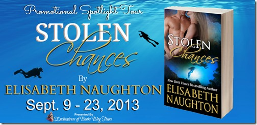 Stolen Chances Blog Tour Banner