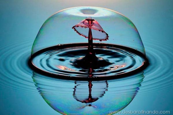 liquid-drop-art-gotas-caindo-foto-velocidade-hora-certa-desbaratinando (125)