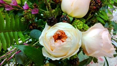 garden roses, blackberries