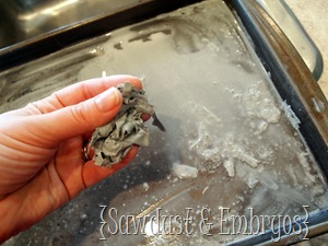 Clean your stencil (Sawdust &amp; Embryos)