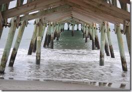 Beach Feb. 2012 097