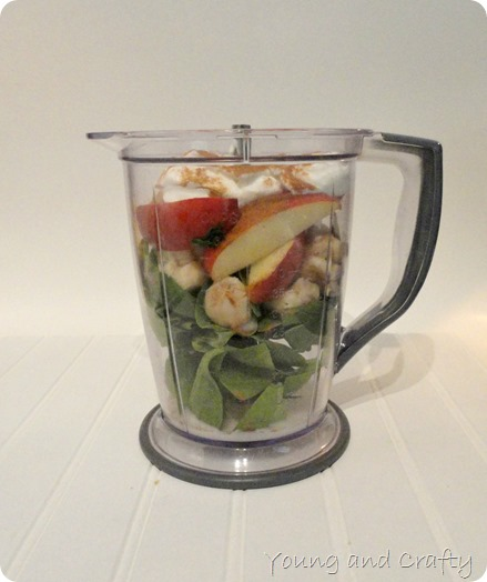 Apple Pie Smoothie Blender