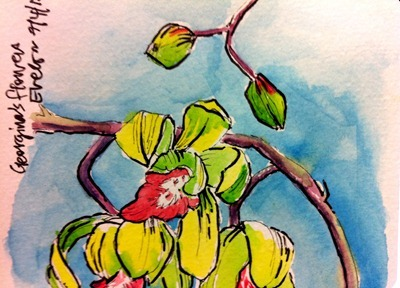 Watercolour and Ink orchids