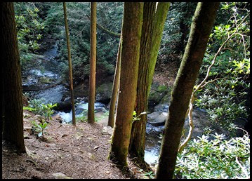 22g - Raven Cliffs Falls - Falls at .4 miles