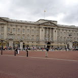 at buckingham palace in London, London City of, United Kingdom