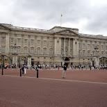 at buckingham palace in London, London City of, United Kingdom