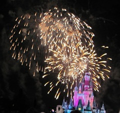 Disney trip fireworks near castle 1