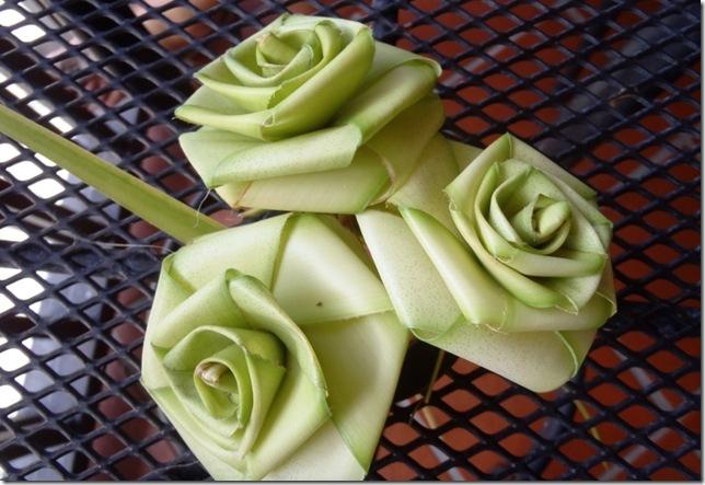 017n rosen aus palmen