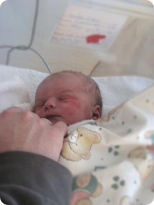 isabella nyfødt1