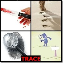 TRACE- 4 Pics 1 Word Answers 3 Letters