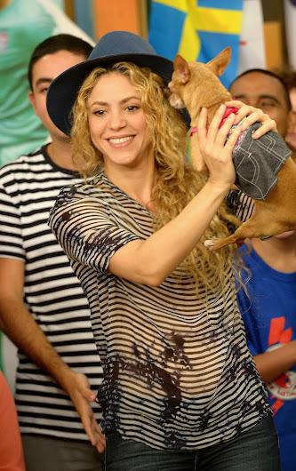 Шакира фото 2014 14950