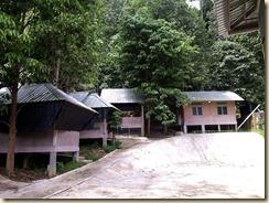Campsite Venue D