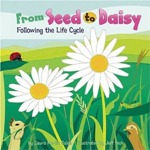 From Seed to Daisy