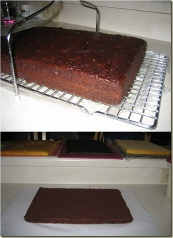 cake tips_thumb[1]