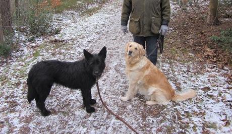 Rosca&Luna (2)