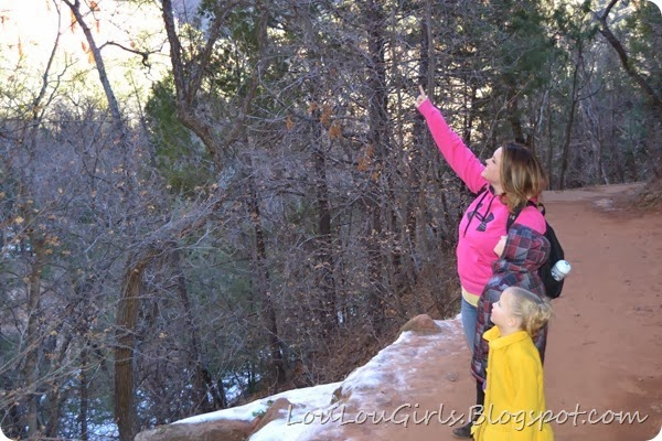 Fun-hikes-for-families-in-southern-utah (5)