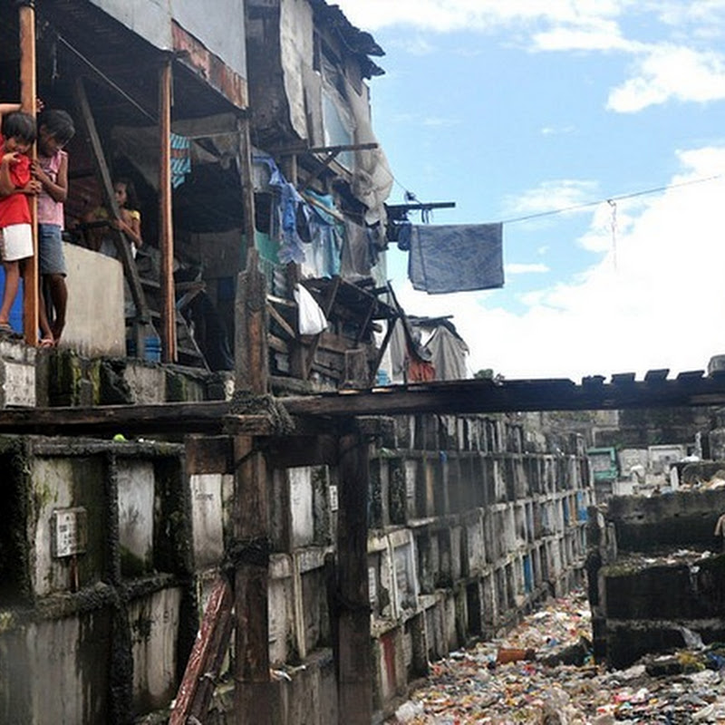 The Living Residents of Manila's North Cemetery