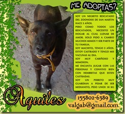 AQUILES2 copy