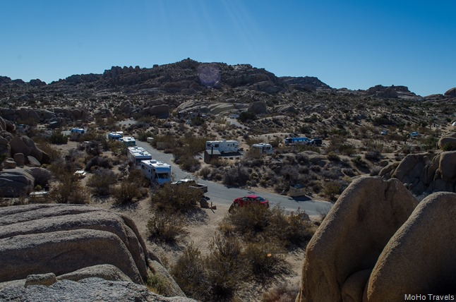 Joshua Tree Morning (52 of 54)