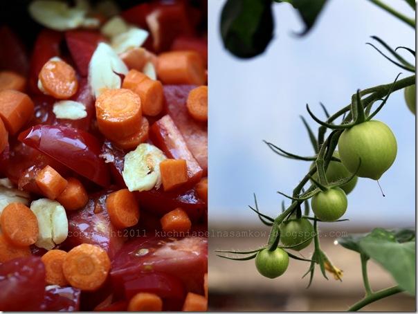 Zupa pomidorowa Billa Grangera5