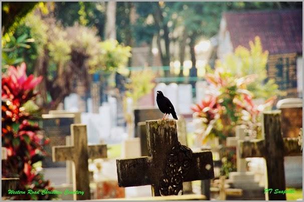 西方路基督教墓园 1
