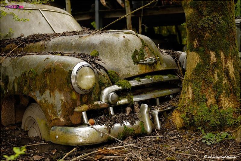 cars_025.jpg