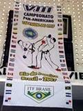 Panamer Brasil 2007 - 001.jpg