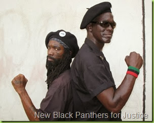 new_black_panthers
