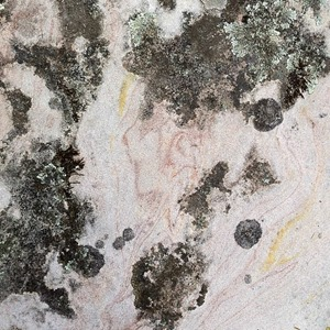 Textures, tones and colours of The Grampians by Belinda Evans 9