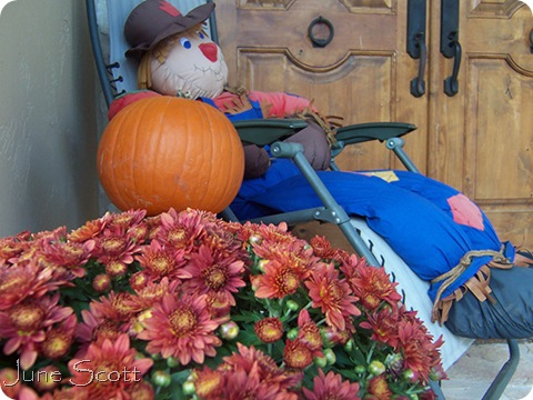 Front_Porch_Mums_Scarecrow