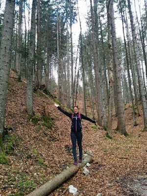jess forest.jpg