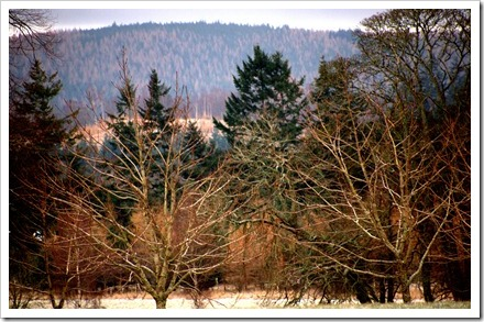 29 Dec 4 19-12-2011 12-03-45.ORF