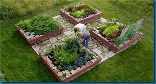 new ideas for gardening blog