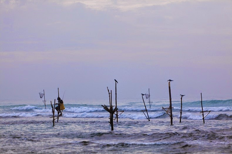 stilt-fishermen-sri-lanka-4