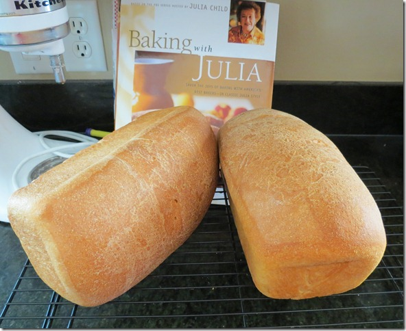 Whole Wheat Loaves 9-9-12
