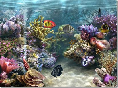 Trasformare il desktop del pc in un acquario for Sfondo animato pesci