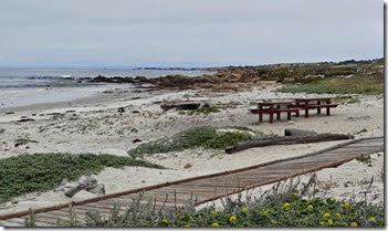 Pebble beach 021
