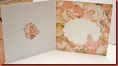 Baby kort i korall (2)