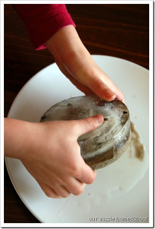 Our Aussie Homeschool ~ Making a Comet