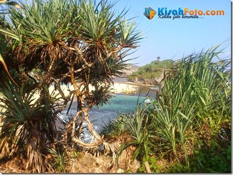 Tebing pantai watu kodok Drini_02
