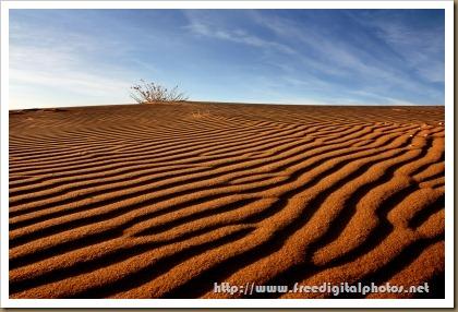 http://www.freedigitalphotos.net/images/Landscapes_g114-Sand_Dunes_p66988.html