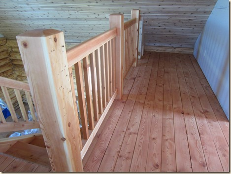 Chicken tractor and tung oil staining 118