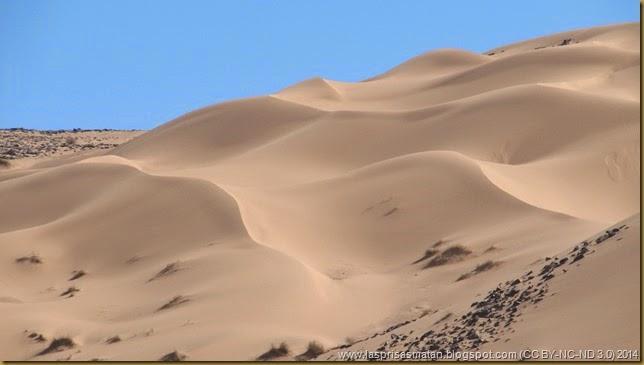 Desierto-216
