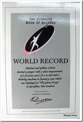 World record holder Giant Jersey.