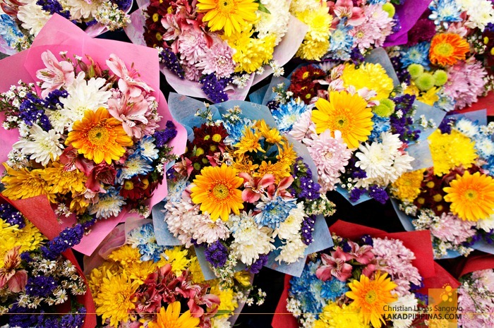Burst of Colors at Dangwa Flower Market in Manila
