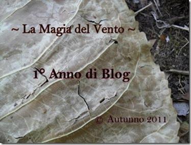 SAM_0062banner_anno_di_blog_1