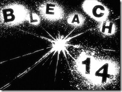 Bleach 14 Title