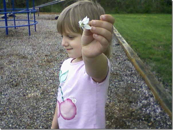 emma flower