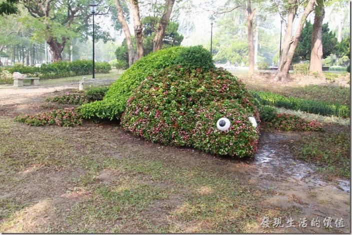 台南-2014中山公園百花祭。這是烏龜造型的花卉裝置藝術,結合公園內原來的植物,再加些花卉而成。